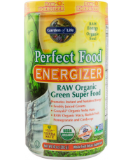 RAW Perfect Food Energizer 282g.
